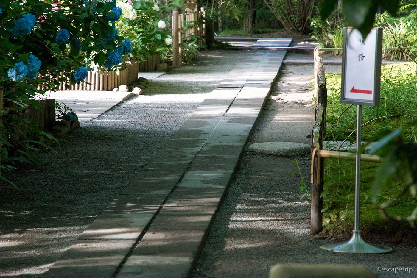 明月院の道