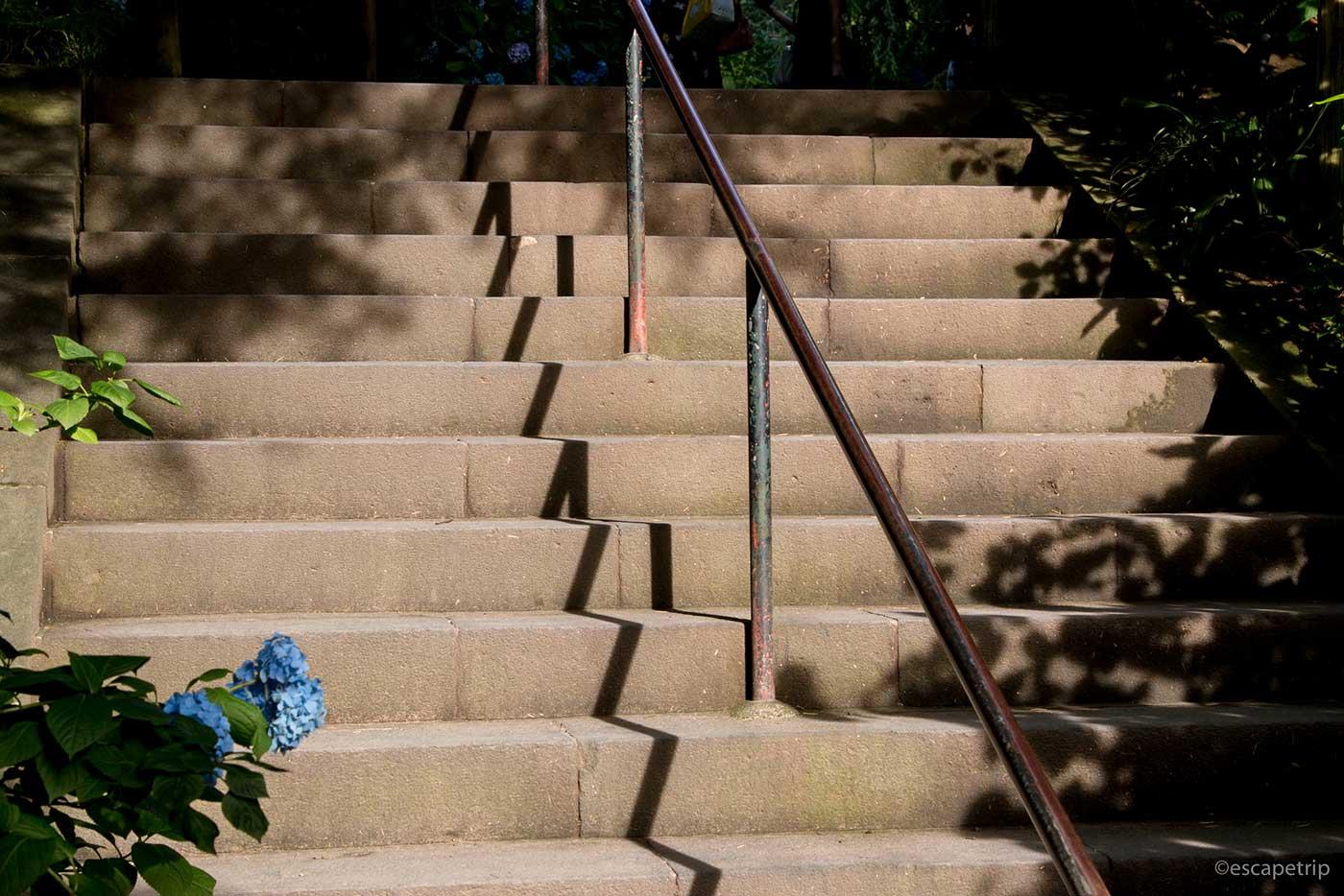 明月院の階段