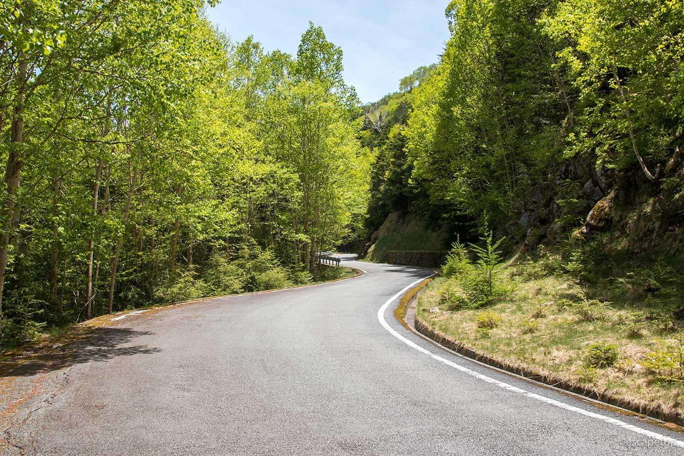 川上牧丘線の道