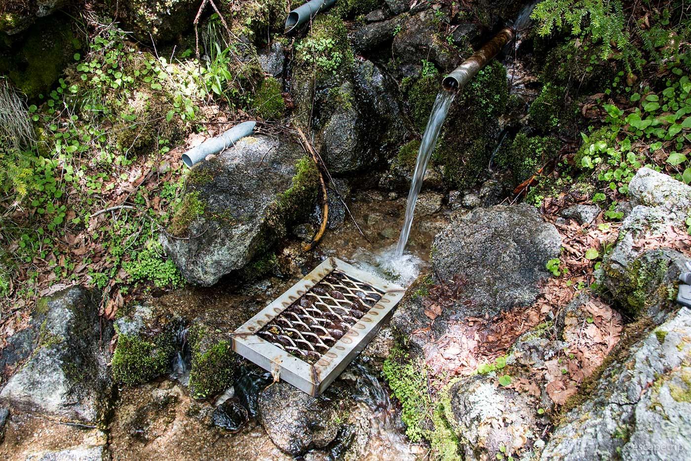 大弛峠付近の湧き水