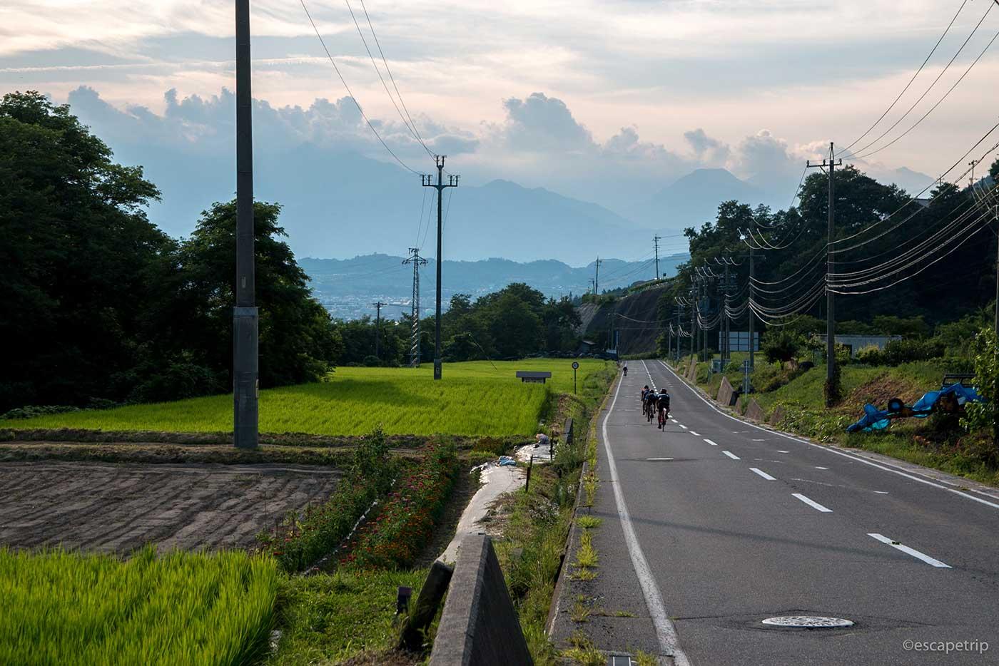 夏の夕暮れと田んぼと入道雲