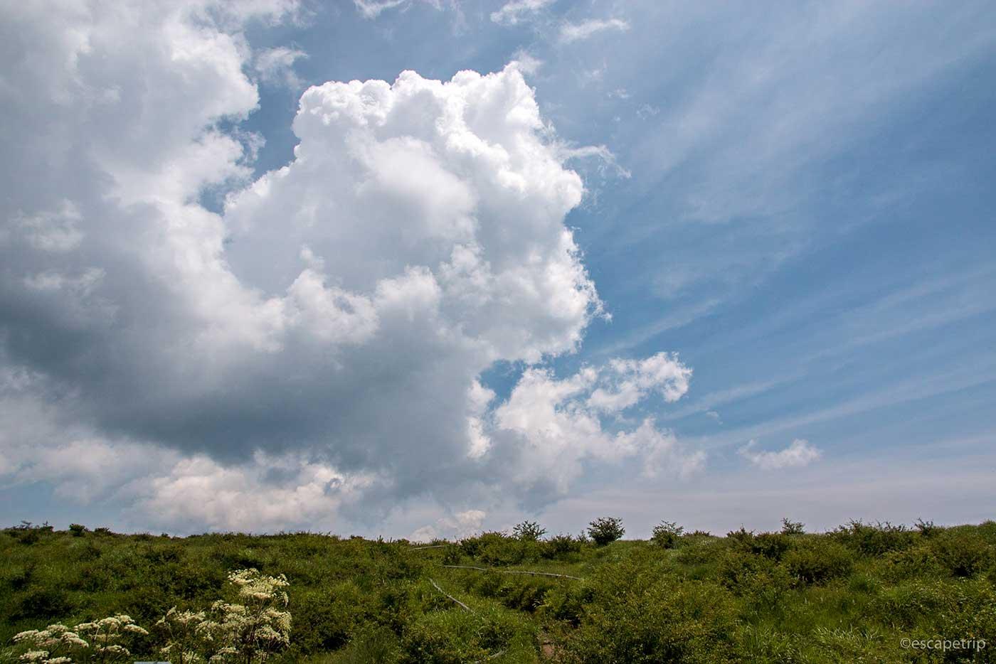 高ボッチ高原と入道雲