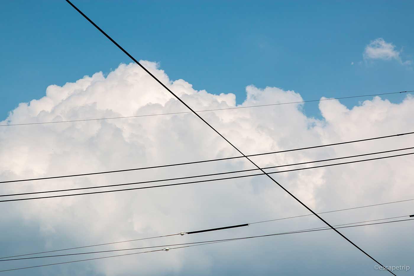 電線と入道雲