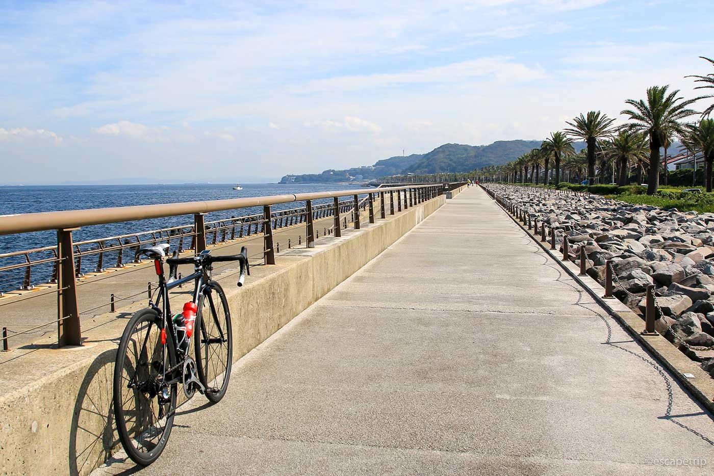 横須賀の景色とロードバイク