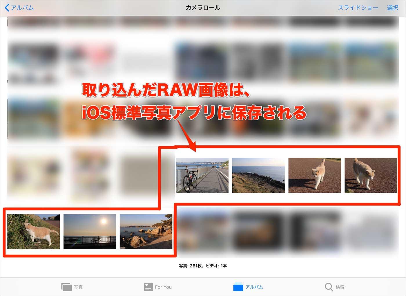 iPadにRAW画像を取り込む