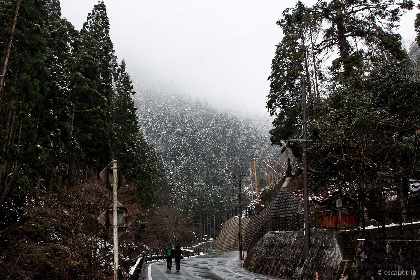 貴船山へ向かう道