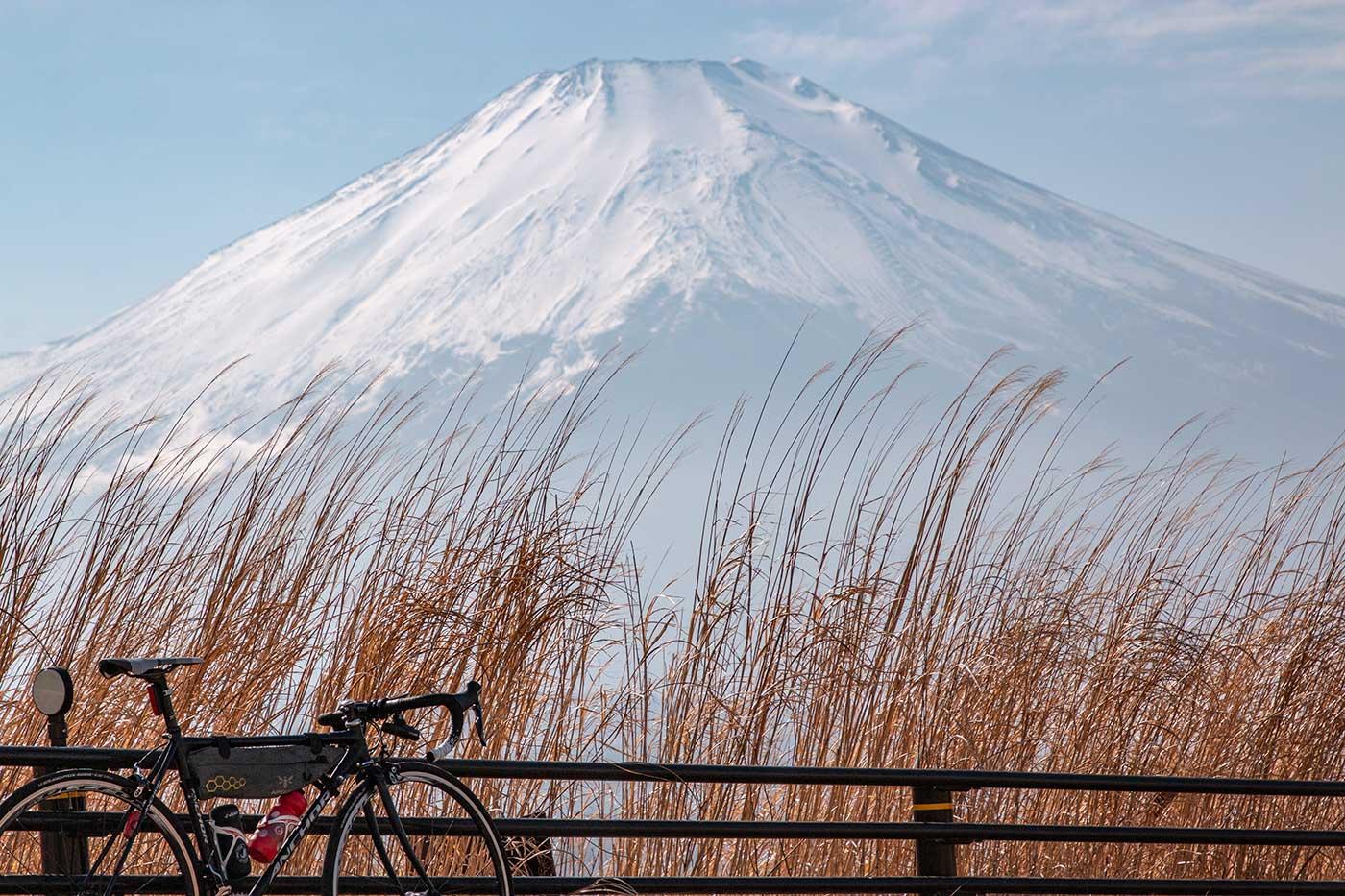 富士山とススキとロードバイク