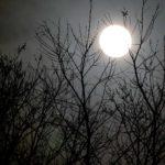 満月ライド記事のアイキャッチ