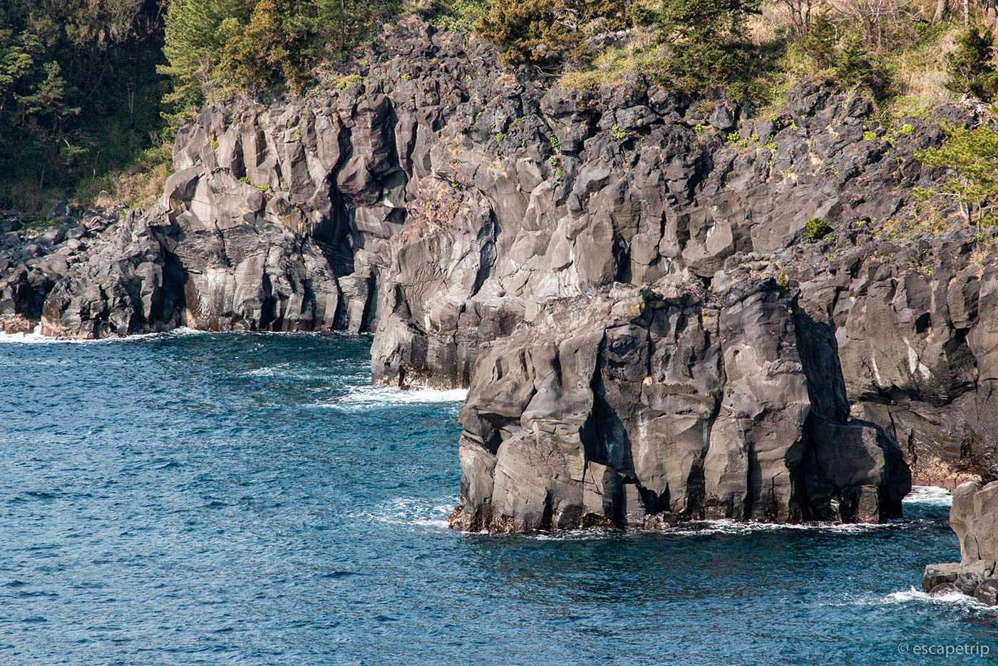 城が先海岸の海岸