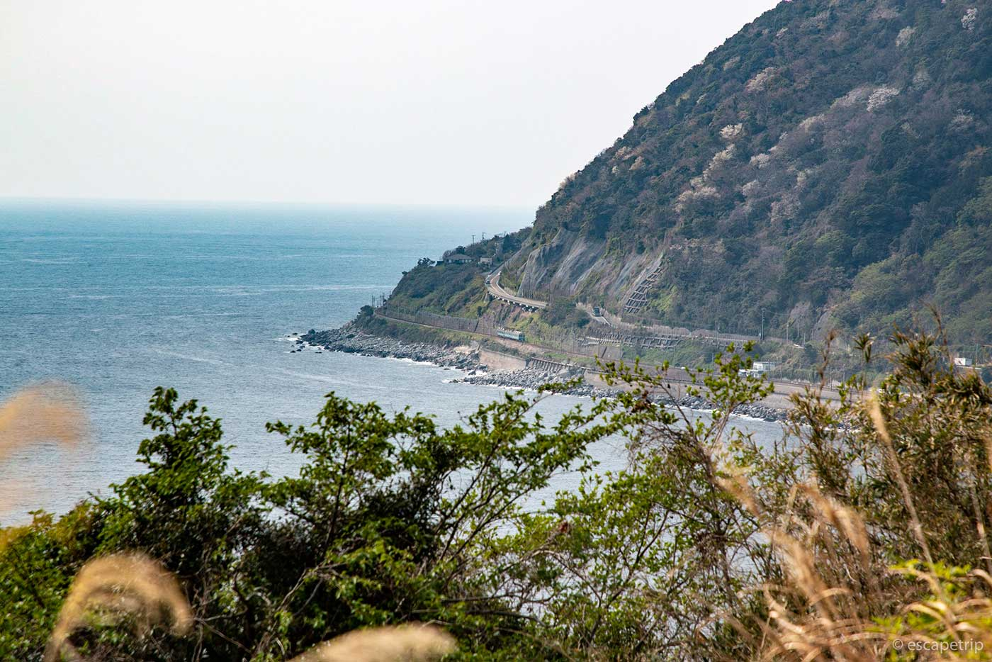 東伊豆の海岸線