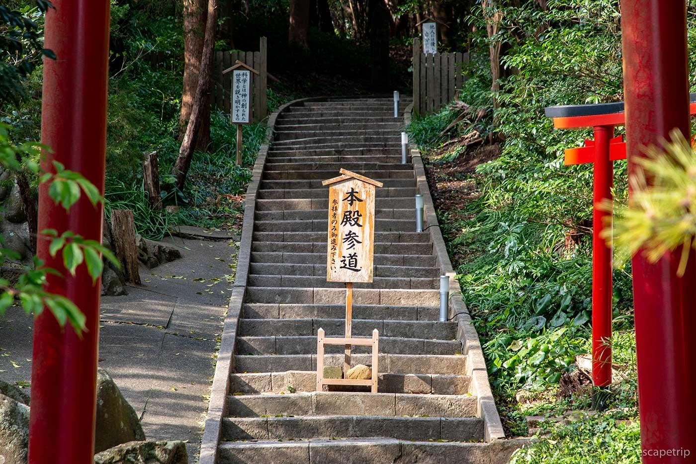 白浜神社の本殿への参道