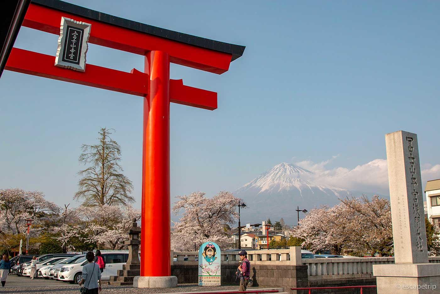 富士山本宮浅間大社の鳥居と富士山