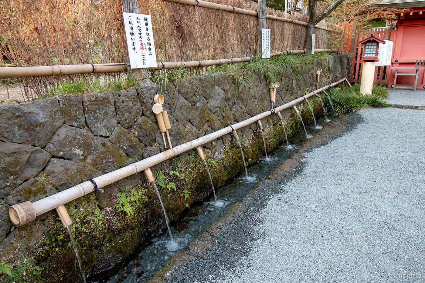 湧玉池の水汲み場