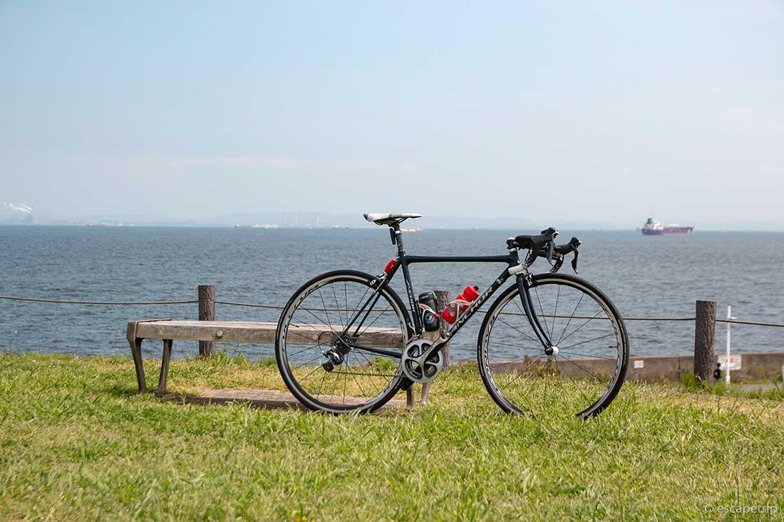 芝生とロードバイク