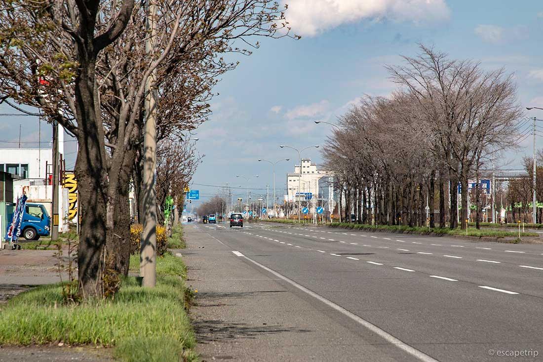 北海道の長い道