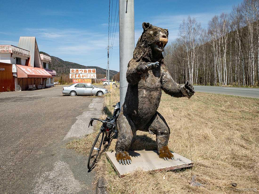熊とロードバイク