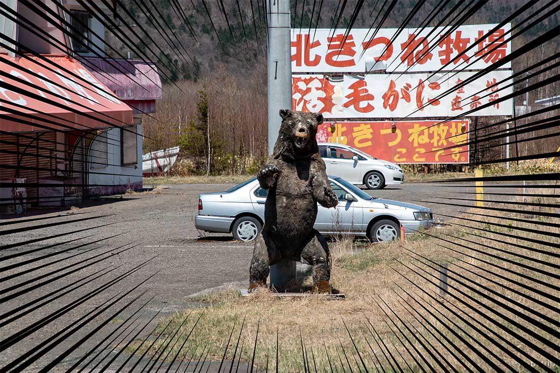 リアルな熊