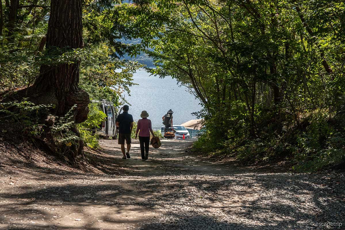 木漏れ日の道