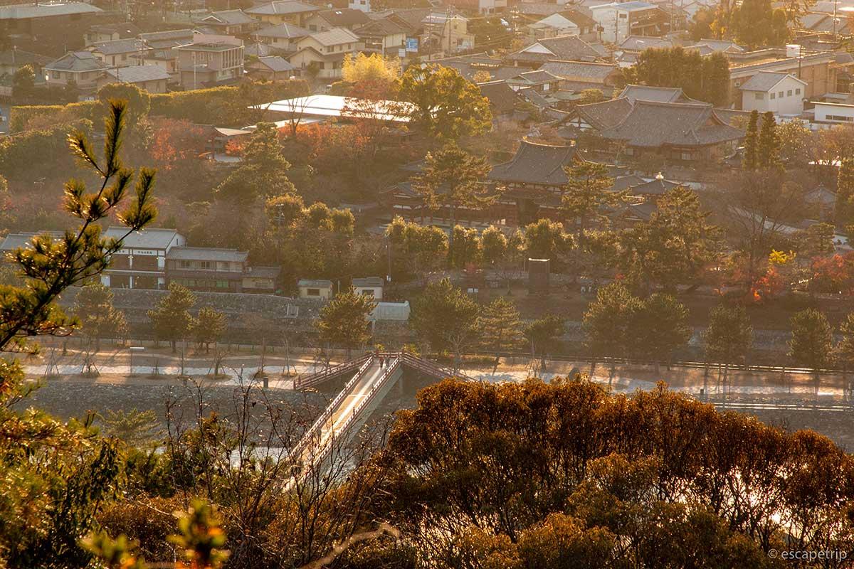 宇治市内が一望できる大吉山展望台