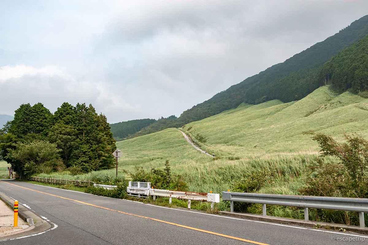 箱根の仙石原