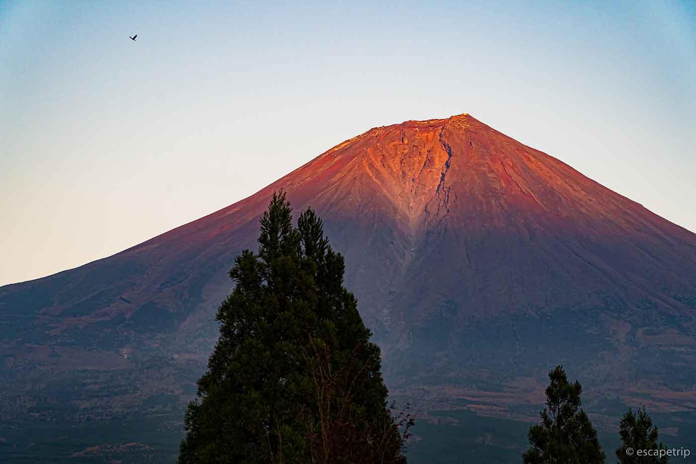 夕方の赤富士