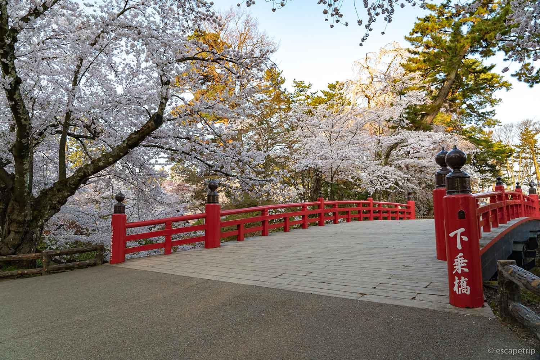 下乗橋と桜
