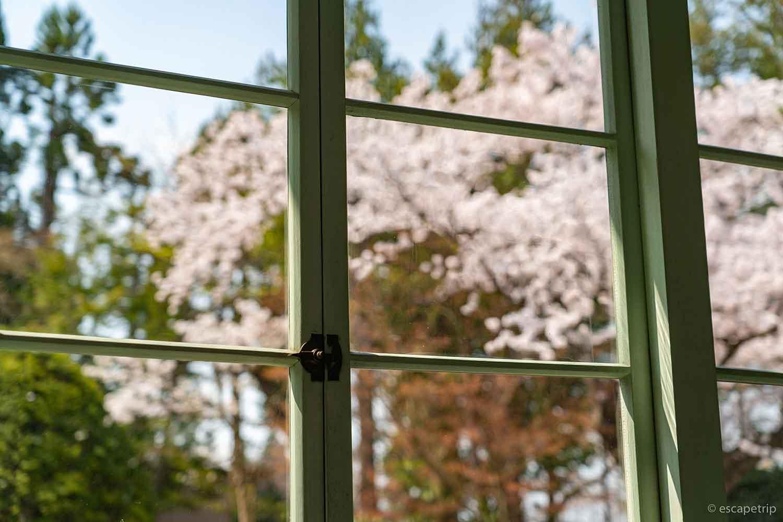 大正浪漫喫茶室の窓