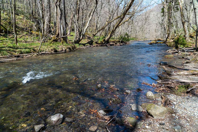 奥入瀬渓流の流れ
