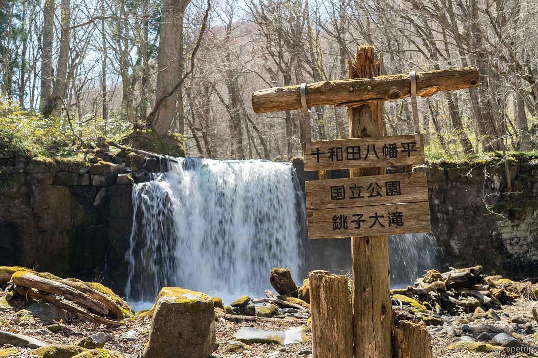 奥入瀬渓流の銚子大滝