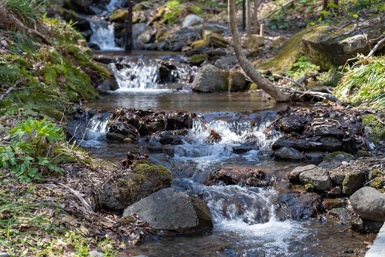 奥入瀬の渓流
