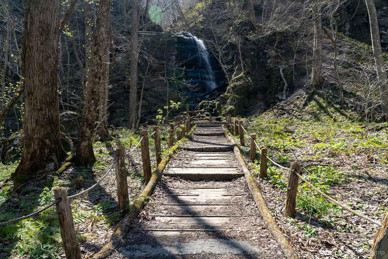 奥入瀬渓流の歩道