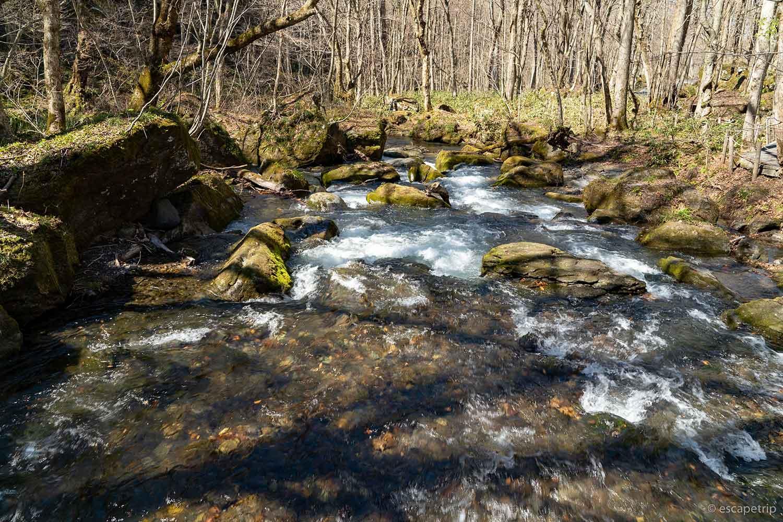 奥入瀬渓流の景色