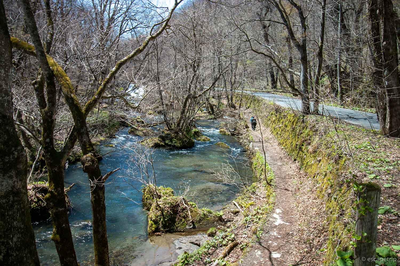 奥入瀬渓流のハイキングコース