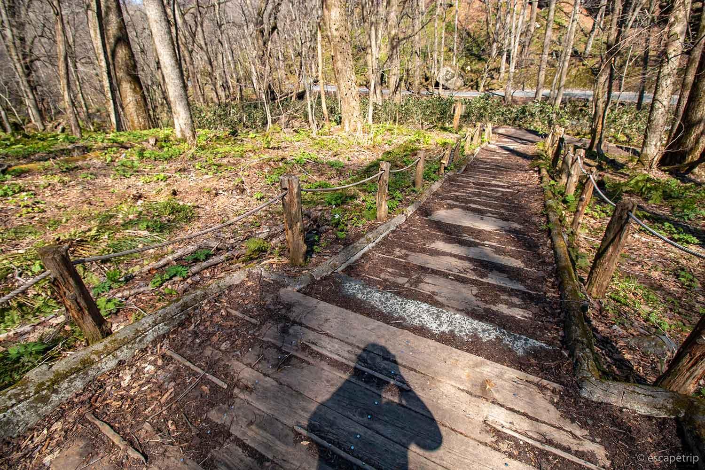 奥入瀬渓流の遊歩道
